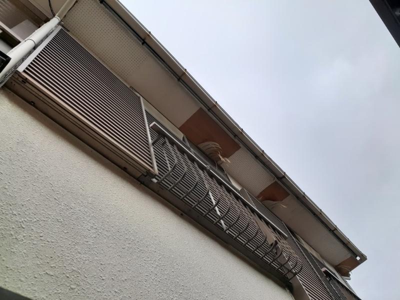軒天井剥れ