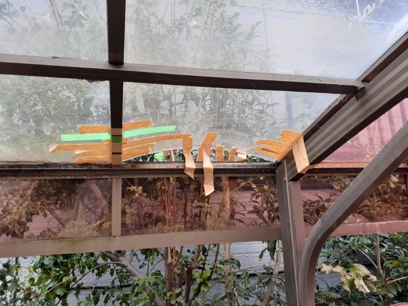 瓦屋根破損
